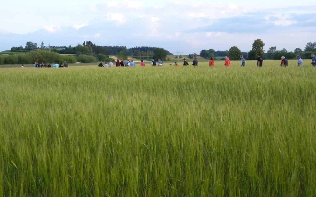 Landwirtschaft und Bienen – Eine Symbiose; Exkursion 2 nach Gallenbach