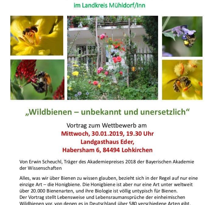 Wildbienen – unbekannt und unersetzlich