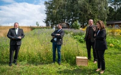 """IV Stierberg erreicht 2. Platz beim Wettbewerb """"Landwirt.Imker.Miteinander"""" des Staatsministeriums"""